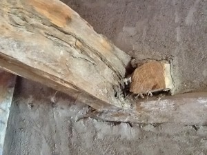 Viga de madera empotrada en la pared